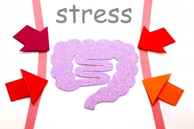 ストレスと腸
