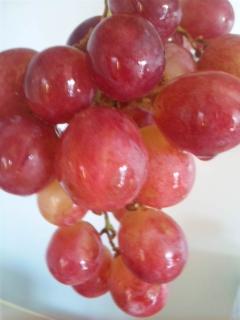 ダイエットでフルーツを取り入れている方必見!食後のフルーツが太る理由