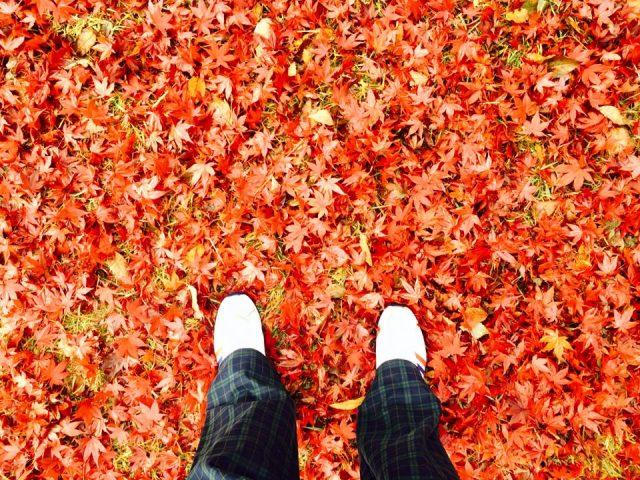 紅葉の中で運動